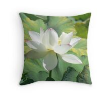 Botanical gardens sydeny Throw Pillow