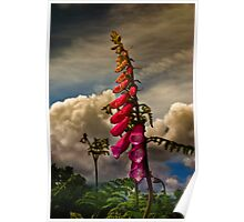 Hedgerow Poster