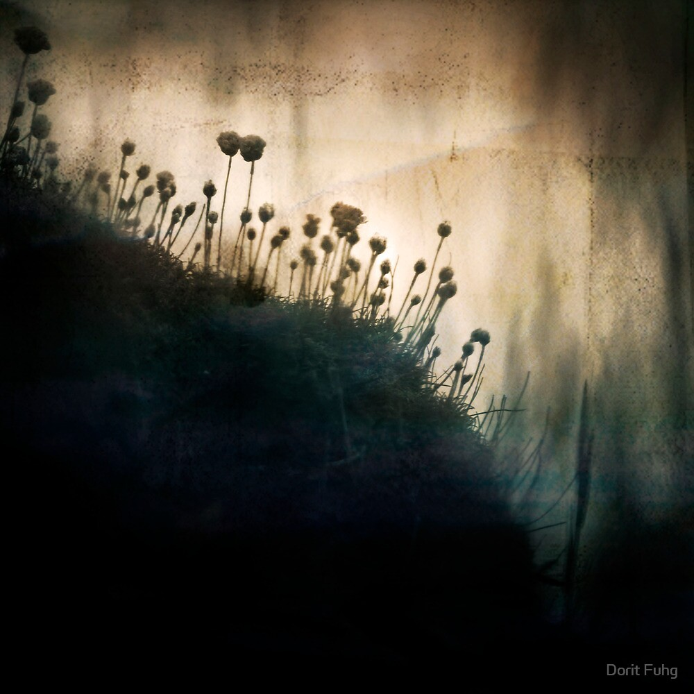 wild things - number 1 by Dorit Fuhg