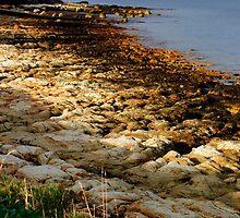 Craggy Coastline by WobblyWombat