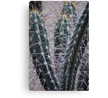 Well guarded Canvas Print