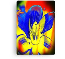 4392 Psychedelic Orchid Canvas Print
