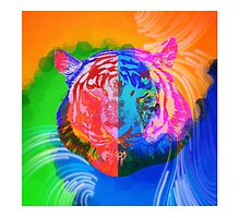 Lion in color maze by Healinglove