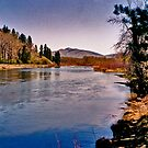 The Bitterroot River at Maclay Flats by Bryan D. Spellman