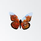 Butterfly Double Exposure by BenClark