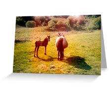 Together we stand Greeting Card