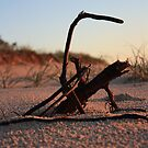 A stick in the....... by Andrew Armstrong