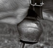 Cattle Bells.  by Dania Reichmuth