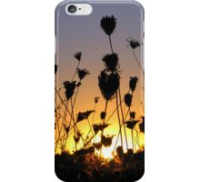 When the Day is Short iPhone Case/Skin