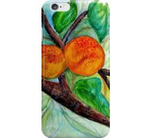 Apricots are nice iPhone Case/Skin