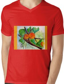 Apricots are nice Mens V-Neck T-Shirt