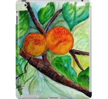Apricots are nice iPad Case/Skin