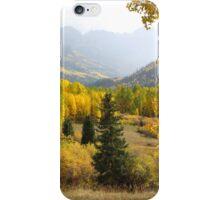 Leaf Days iPhone Case/Skin