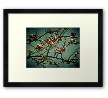 False Start Framed Print