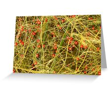 Asparagus Berries Greeting Card