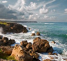 A View of Ragged Point from Deebles Point by jbhicks