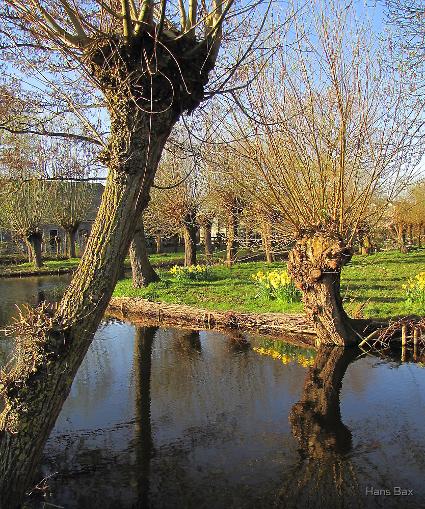 Spring Reflected 04'10 by Hans Bax
