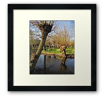 Spring Reflected 04'10 Framed Print