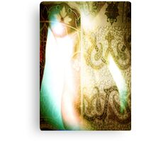 3784 Abstract Nude Figure Canvas Print