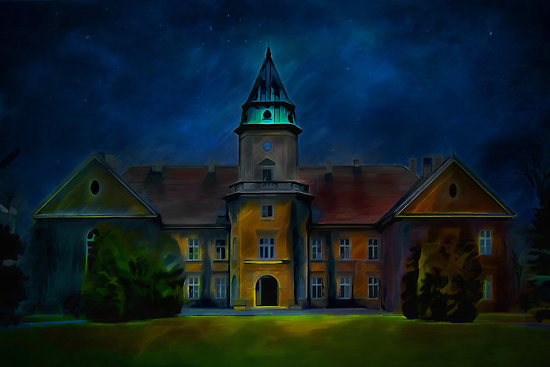 Dzikow Castle by andy551