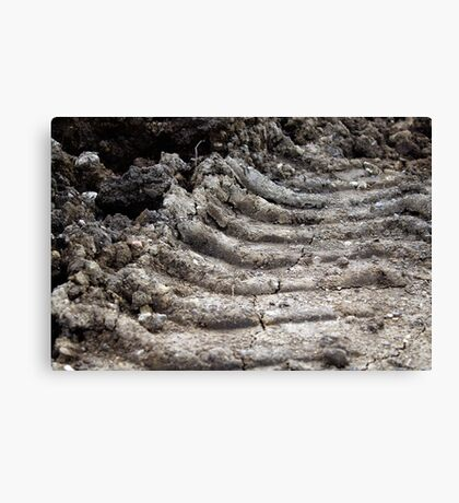 Leave Your Mark Canvas Print