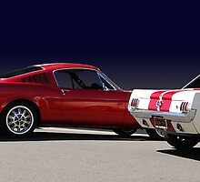 stangs by WildBillPho