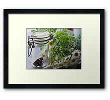 Summer Still Life with Feverfew Framed Print