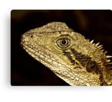 Eastern Water Dragon Portrait Canvas Print