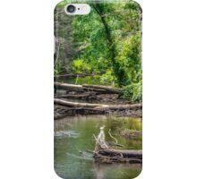 Quinebaug River Sturbridge MA iPhone Case/Skin