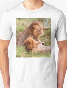 Big Cats Play T-Shirt