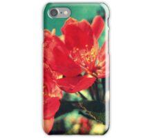 Retro Blossom iPhone Case/Skin