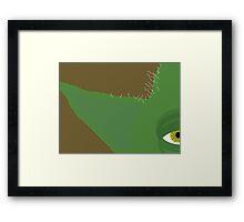 900 Framed Print