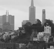The Streets of San Francisco by Heather Watson