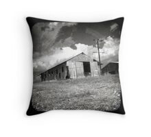 Outback Shed Throw Pillow