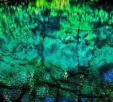 Jenolan Waters by Virginia Daniels