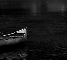In the Still of the Night ~ Lake Roberts, NM by Vicki Pelham