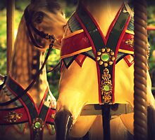 All The Pretty Horses - Melbourne Zoo Carousel, Melbourne by Georgina James