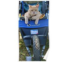 Cushy Ride Poster