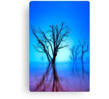 Foggy Dawn at Lake Eildon #1 Canvas Print