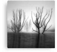 Foggy Dawn at Lake Eildon #2 Canvas Print