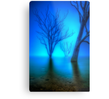 Foggy Dawn at Lake Eildon #3 Metal Print