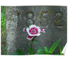 Rememberance Poster