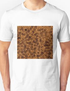 Thatched Roof Unisex T-Shirt