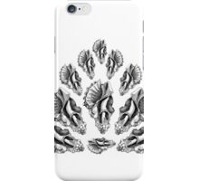 Broken Shells in Black and White iPhone Case/Skin
