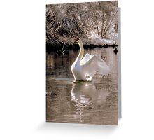Remaining serene while rising Greeting Card