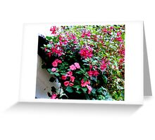 flowers at a pub in Marlow,England Greeting Card