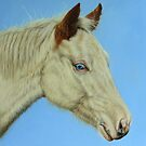 Paint Horse Filly by Margaret Stockdale
