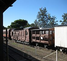 Interesting old railway carriages. by Marilyn Baldey