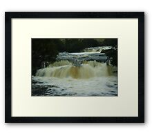 Pencil Pine Falls Framed Print
