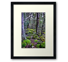 """""""Deep in the Forest"""" Framed Print"""